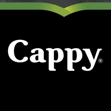0,25l Cappy